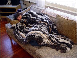 Rabbit Skin Blanket